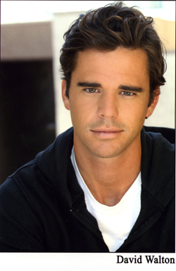 David Walton (actor) David Walton starring in