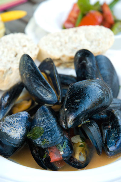 2011-01-27-mussels_in_shell.jpg