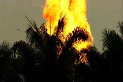 2011-01-28-firepalmS.jpg