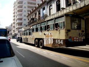 2011-01-30-DSC07772.jpeg