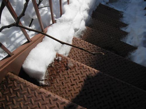 2011-02-03-Crone18.jpg