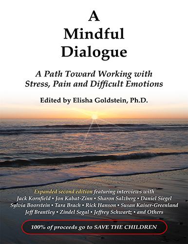 2011-02-04-mindfuldialogbig.jpg