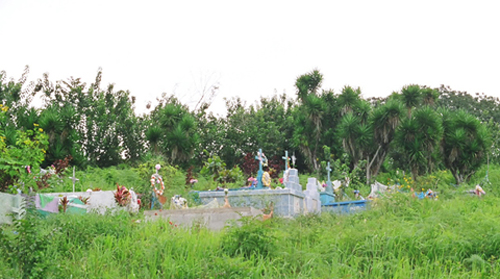 2011-02-06-cemetery.jpg