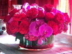 2011-02-07-flower.jpg