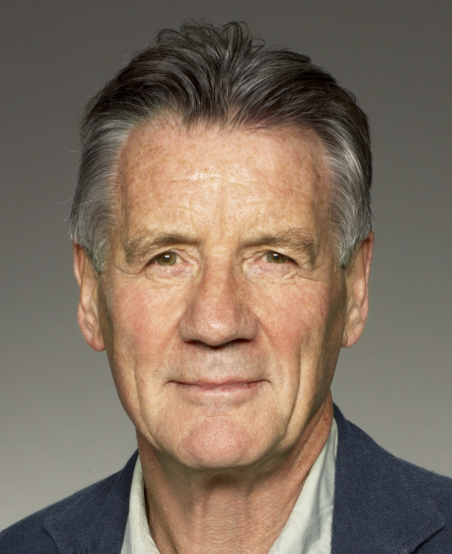 michael palin diaries