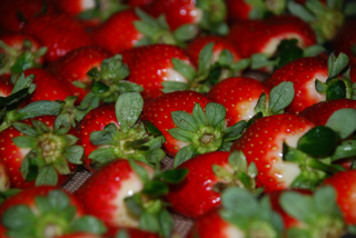 2011-02-11-strawberriesreadytobefrozen.jpg