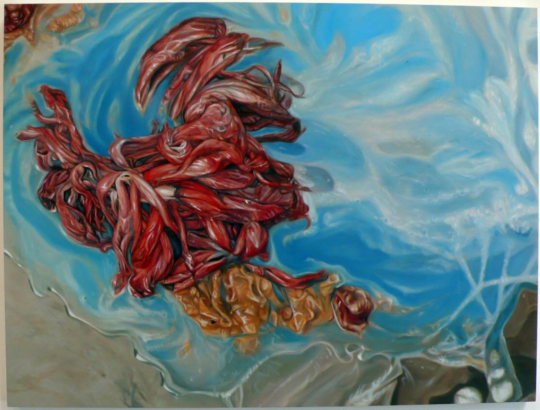 2011-02-14-BleachedHibiscus.jpg