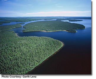 a photo from above of the boreal forest - Photo Courtesy: Garth Lenz