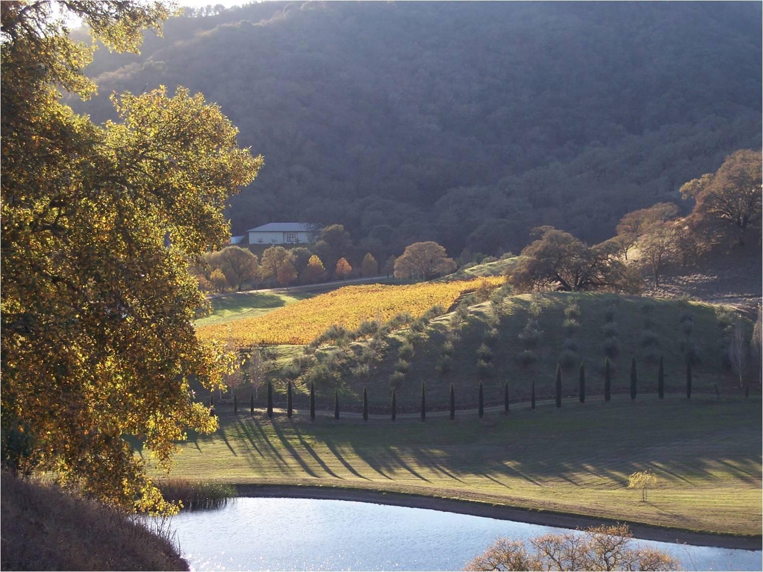 2011-02-17-4hilltopview1.jpg