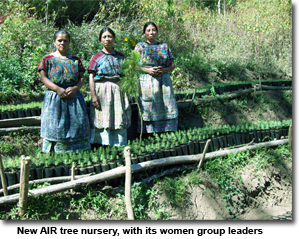 New AIR tree nursery, with its women group leaders
