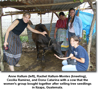 <br /> Anne Hallum, left, Rachel Hallum-Montes, kneeling, Cecilia Ramirez, and Dona Catarina with a cow which the women's group bought together, after selling tree seedlings in Itzapa, Guatemala