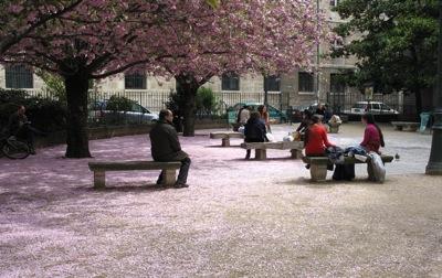 2011-03-25-ParisinSpringtime.jpg