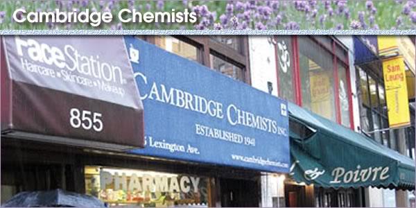 2011-03-28-CambridgeChempanel.jpg
