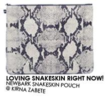 2011-03-28-snakeskin.jpg