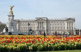 2011-04-13-tulips.jpeg