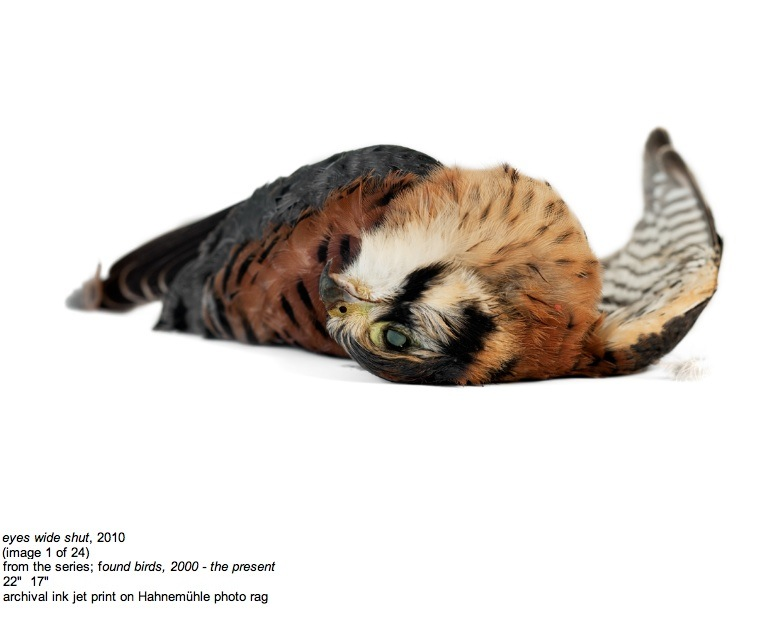 2011-04-21-Silas1.jpg