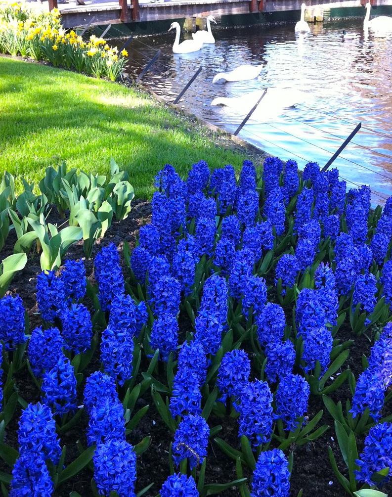 2011-04-21-photo26.jpg