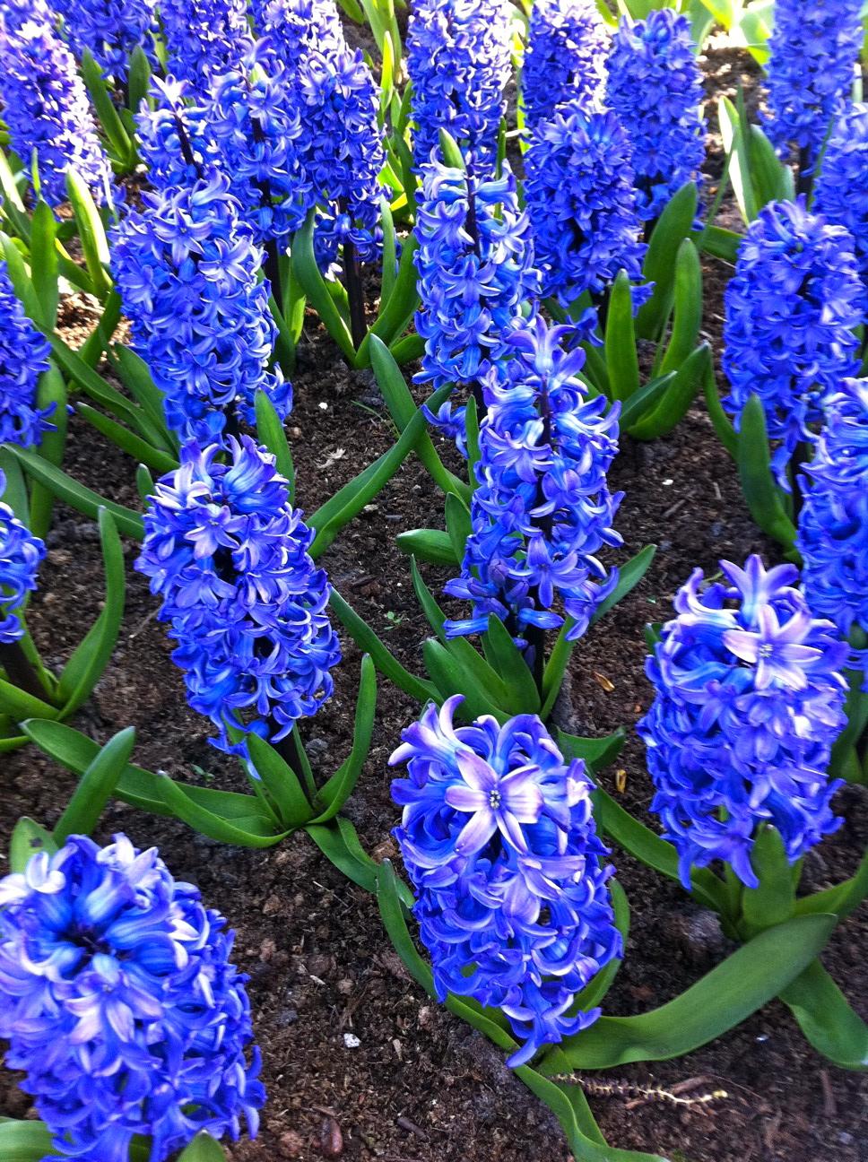 2011-04-21-photo35.jpg