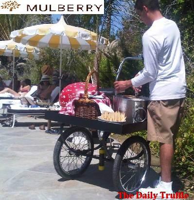 2011-04-22-Mulberrycoachellaparty3b.jpg