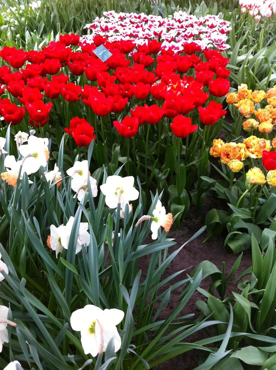 2011-04-22-photo46.jpg