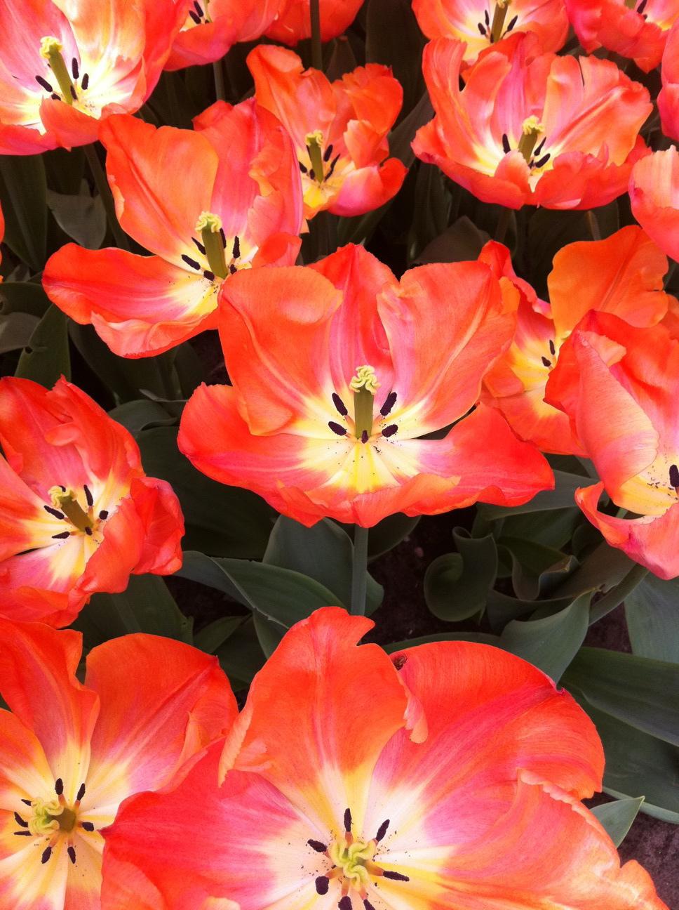 2011-04-22-photo48.jpg