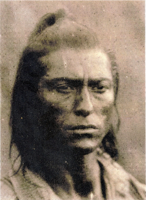 "were the sioux indians wild savages Apology to the native american indians by dr mary hamer, md  of the red savages""  trader andrew myrick said that if the sioux were hungry,."