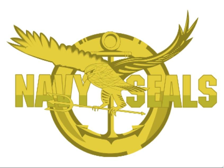 2011-05-03-NavySeals.jpg