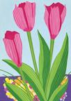 2011-05-12-TulipsHP.jpg