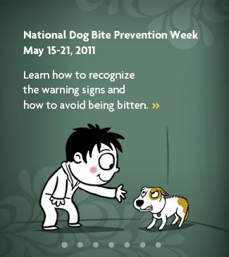 Nationa Dog Bite Prevention Week