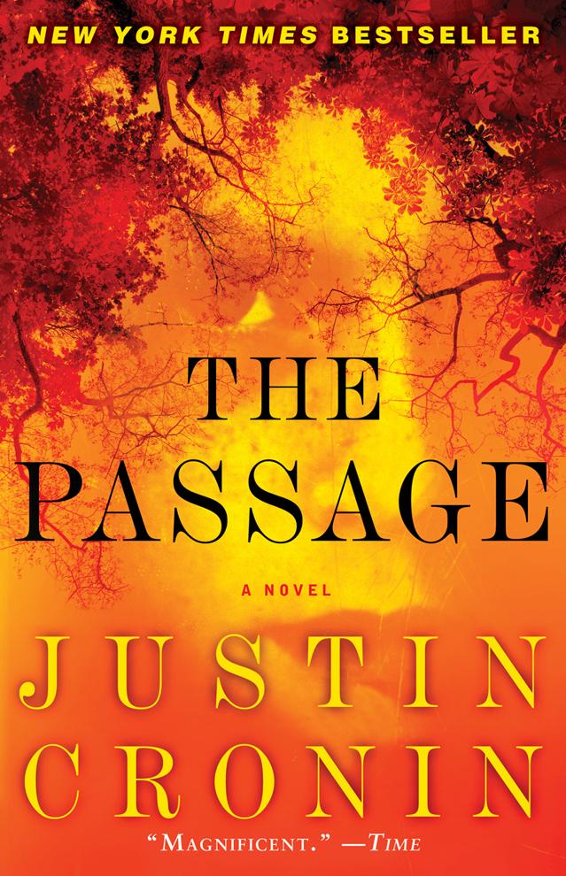 2011-05-17-passage_paperbackcover.jpg