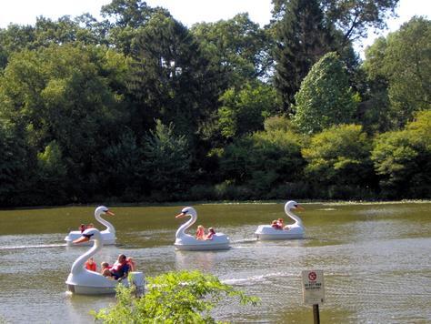 2011-05-31-swanboats.jpg