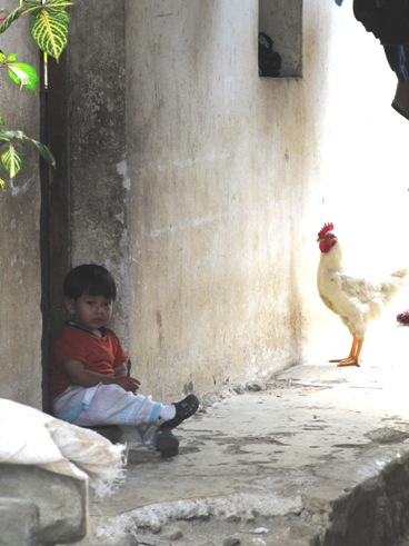 2011-06-02-boychicken1.jpg