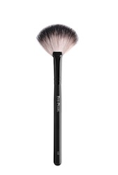 2011-06-06-Fan_brush.jpg