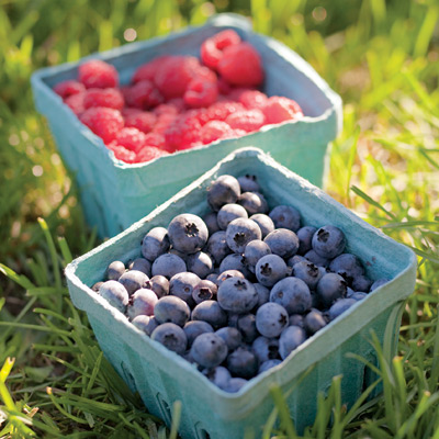 How to Pick the Best Ripe Summer Fruit