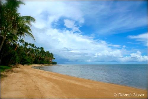 2011-06-26-CousteauBeach.jpg