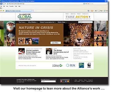 2011-06-29-AGCWebScreenCap.jpg