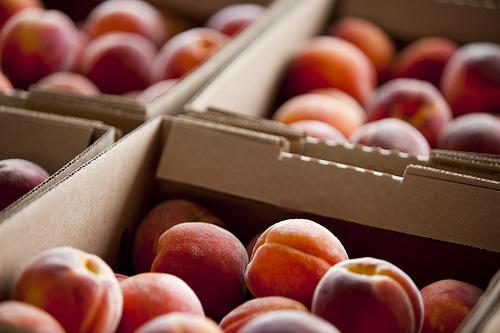 2011-06-29-peachesDCCentralKitchen.jpg