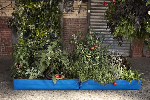 2011-07-11-JEH_WP_Garden.jpg