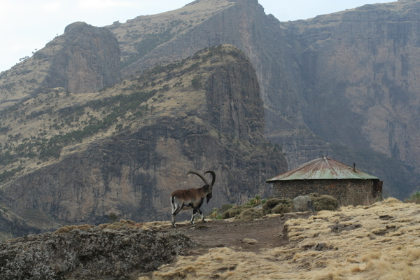 2011-07-18-Simien Mountains-PeterDSLRSimienMountains109.jpg