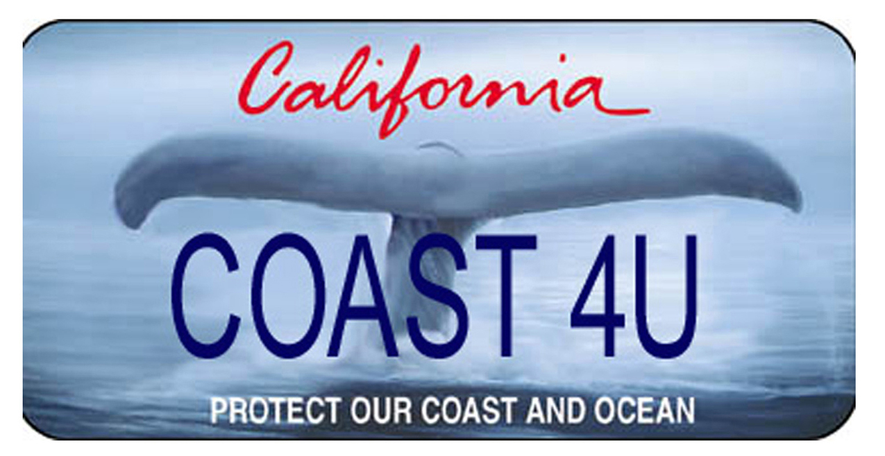 California \'Whale Tail\' Specialty License Plate Gets Redesign ...