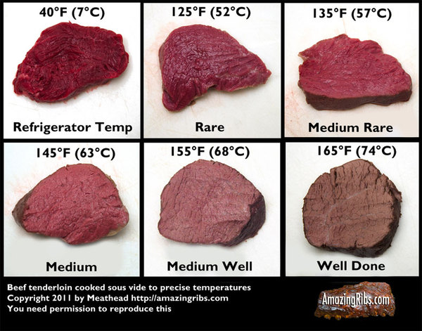 2011-08-04-meat_temps_combined.jpg