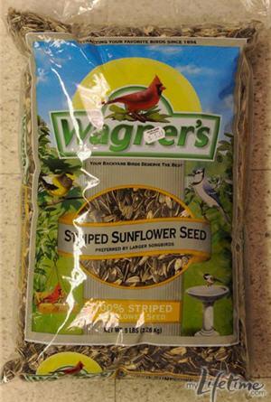2011-08-07-pr2anthonysunflowerseeds.jpg