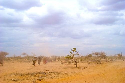 2011-08-30-Dadaab2.jpg