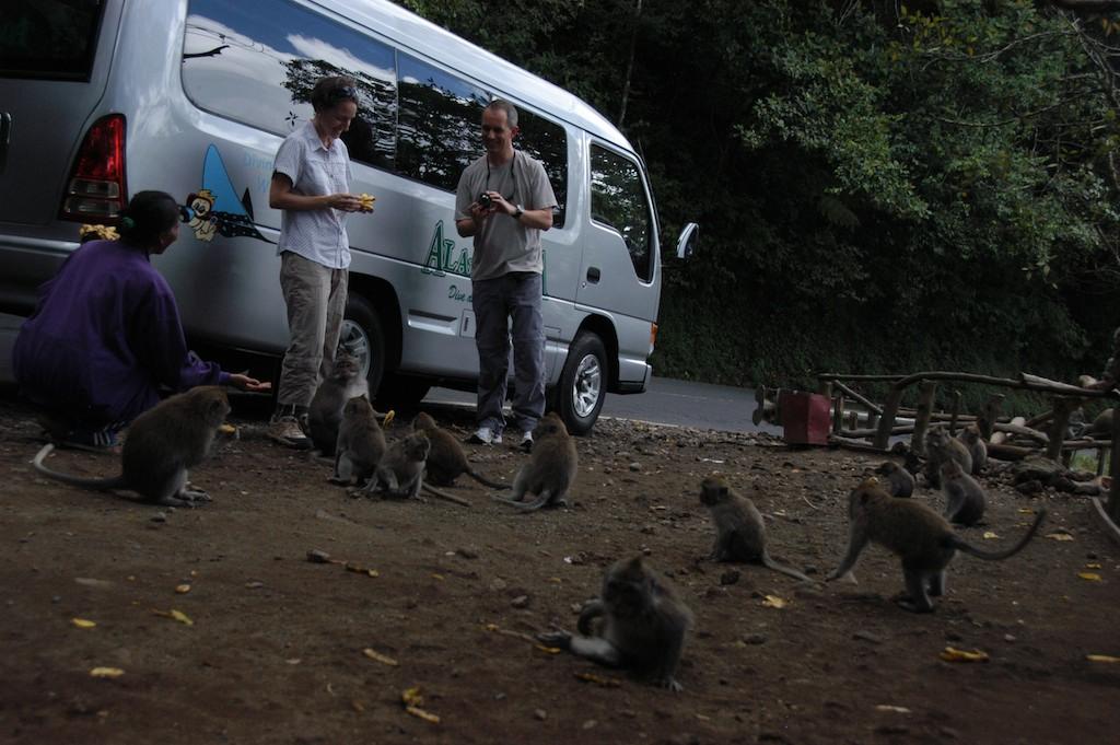 2011-09-26-BaliIndonesia467.jpg