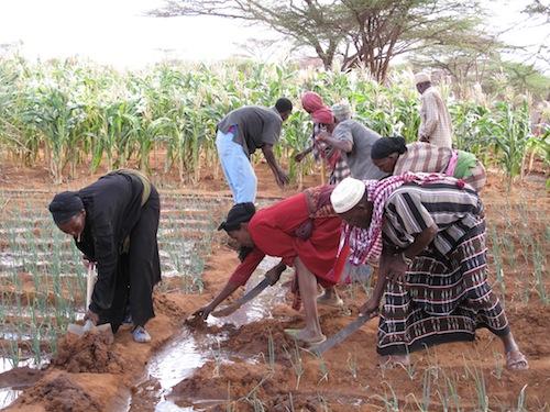 2011-09-30-Canalirrigationwomenworking.JPG