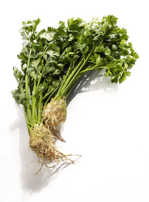2011-10-10-Celeriacraw2.jpg