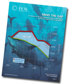 Mind The Gap Report