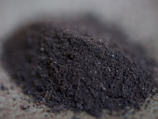 2011-10-25-blacktrumpetpowder.jpg