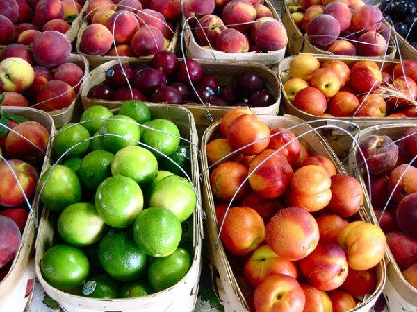 2011-11-02-market2_CJSorg.jpg