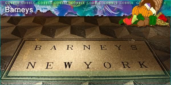 2011-11-15-Barneyspanel1.jpg